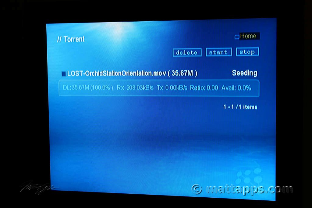 how to stop utorrent seeding